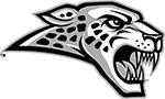 Jaguar web